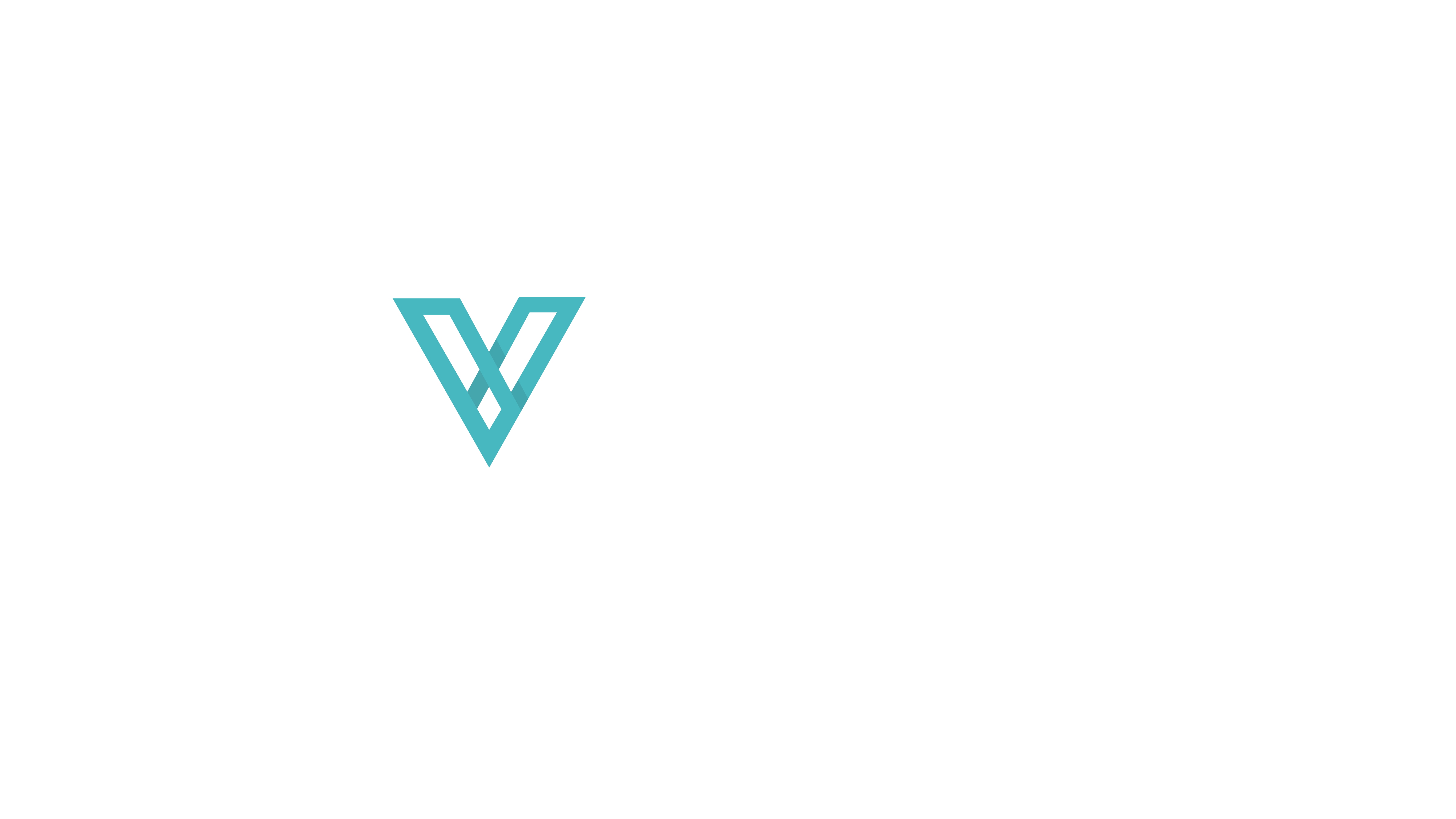 logo-bottom-vue-wcs-window-cleaner